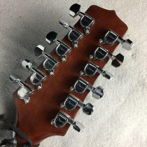Takamine12-String3