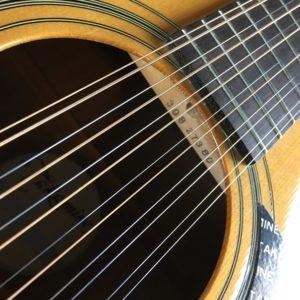 Takamine12-String5